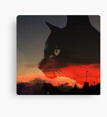 Black Cat at Sunset Canvas Print