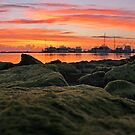 sunrise on the rocks by cliffordc1