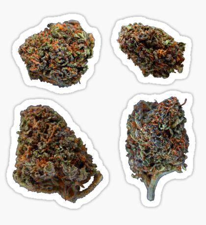 420 Buds #72 Sticker