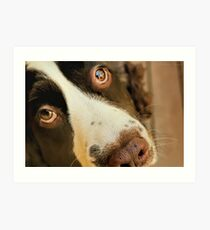 Want Me to Take You For a Walk? Art Print