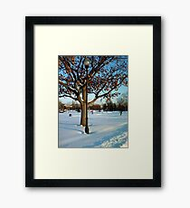 A winter snow scene Framed Print