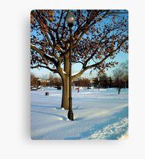 A winter snow scene Canvas Print