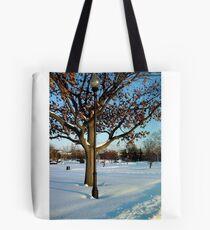 A winter snow scene Tote Bag
