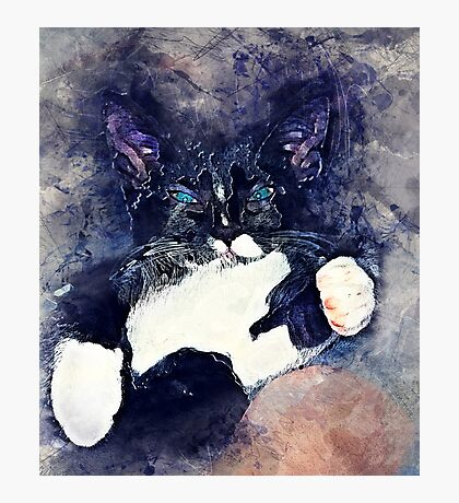 Cat Jagoda Photographic Print