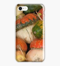 Winter Squash iPhone Case/Skin