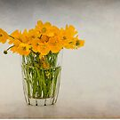 A glass filled with buttercups by Karen Havenaar