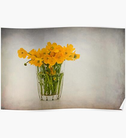 A glass filled with buttercups Poster