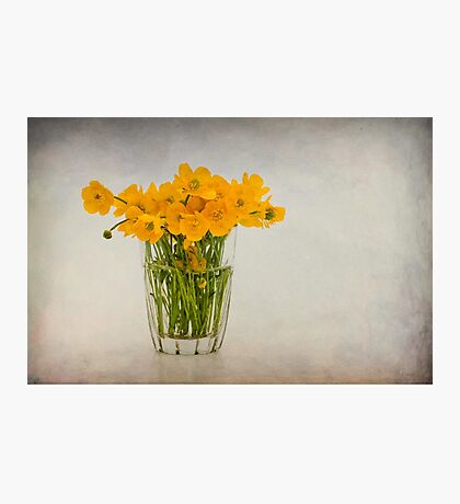 A glass filled with buttercups Photographic Print