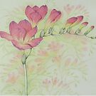 Red Freesia Flower Sprig in Coloured Pencil by Fiona Cross