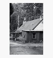 Tin house in the woods Photographic Print