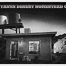 Twin Tanks Desert Homestead Cabin by Peter B
