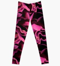 Purple Carnation Leggings
