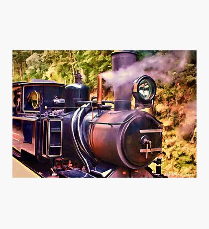 Mount Lyall Number 3 Photographic Print