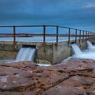 North Curl Curl Pool by Lorraine Creagh