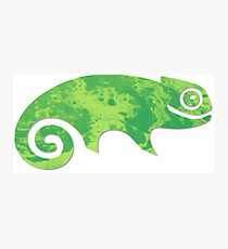 Linux SUSE Photographic Print