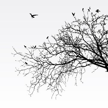 Branches by emirsimsek