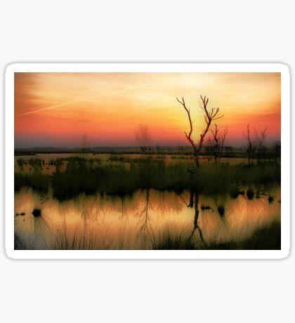 Sunset in the Wetland Fochteloerveen Sticker