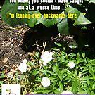 Praying Mantis One - 301215 by robertemerald