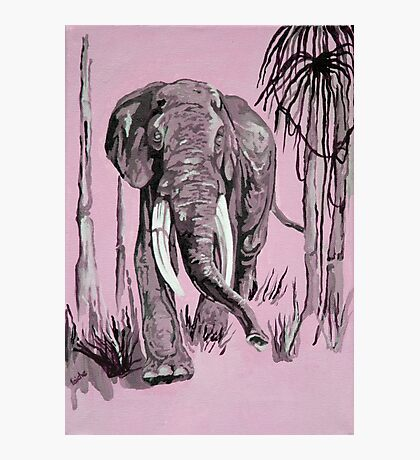 Pink Elephant Photographic Print