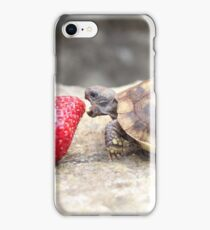Photograph of a baby turtle eating a strawberry iPhone Case/Skin
