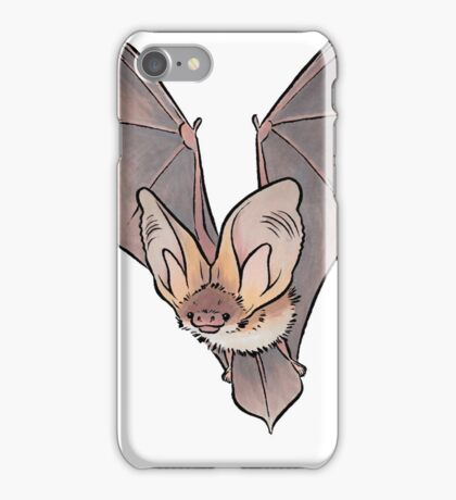 Grey long-eared bat iPhone Case/Skin