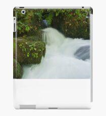 Scenic waterfall. iPad Case/Skin