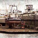 Dry Dock by Wilfried van Dokkumburg