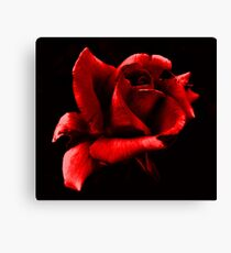 Red and Black~ Canvas Print
