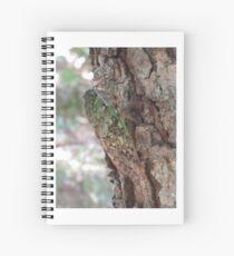 Cicada Spiral Notebook