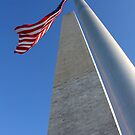 Washington Monument by Samantha Jones
