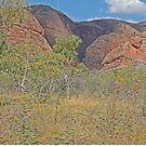 Scenery, Kununurra to Bungle Bungles, Kimberley, Western Australia by Margaret  Hyde