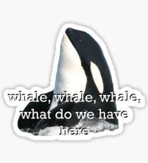 Whale Whale Whale...  Sticker
