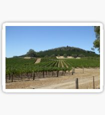 Manicured Vineyard high in the hills, Mount Crawford. S.Aust. Sticker