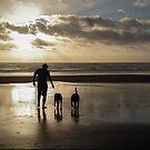Beach Stroll by Sheri Bawtinheimer