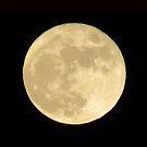 Full Moon by Rochelle Smith