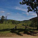 Hillscape by Liz Worth