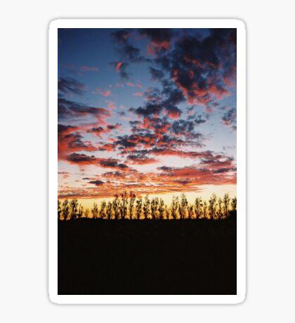 Coonawarra Sunset Sticker