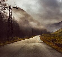 Foggy road by monicamarcov