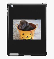 Cutest Chocolate Lab Puppy iPad Case/Skin