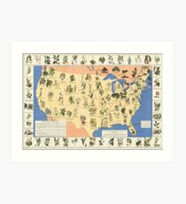 1932 Medicinal Plant Map of the United States. Amazing map of 'Herbal Cures' Art Print