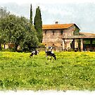 Farm and grazing cows by Giuseppe Cocco
