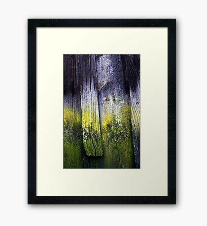 Wood from History Framed Print
