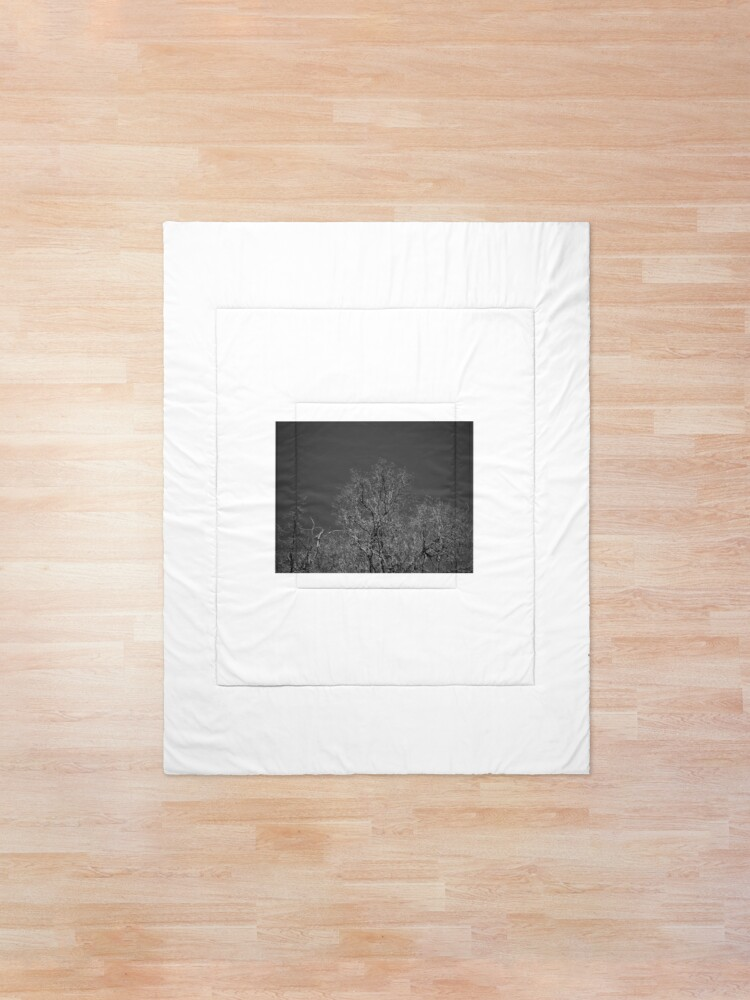 Alternate view of Trees and Sky Comforter