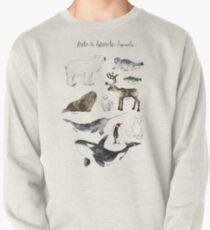 Arctic & Antarctic Animals Pullover