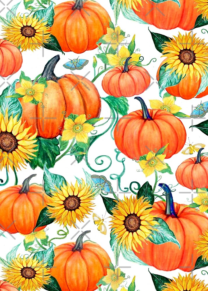 Thanksgiving Pumpkin and Sunflower watercolor with moths by MagentaRose