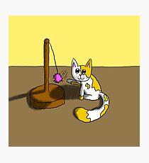 Playful Kitty Photographic Print