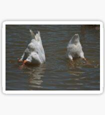 Goose down! Sticker