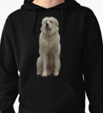 The Great Pyrenees mountain dog Pullover Hoodie