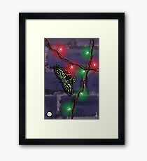 Tailed Jay Framed Print
