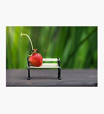 Small world ( strawberry and bug ) Photographic Print